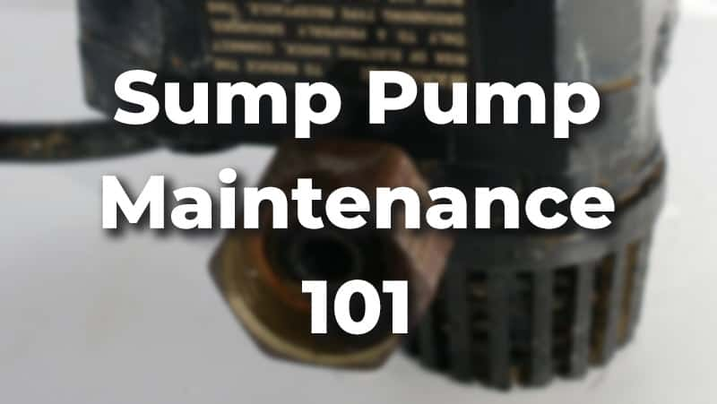 Sump Pump Maintenance 101: All You Need to Know [With Video]